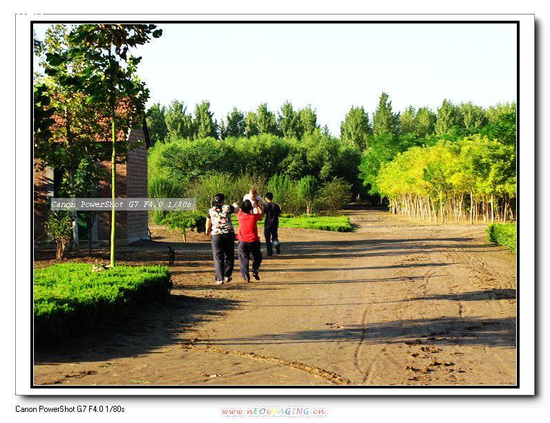 【走在乡间的小路上】-佳能g7论坛-zol中关村在线