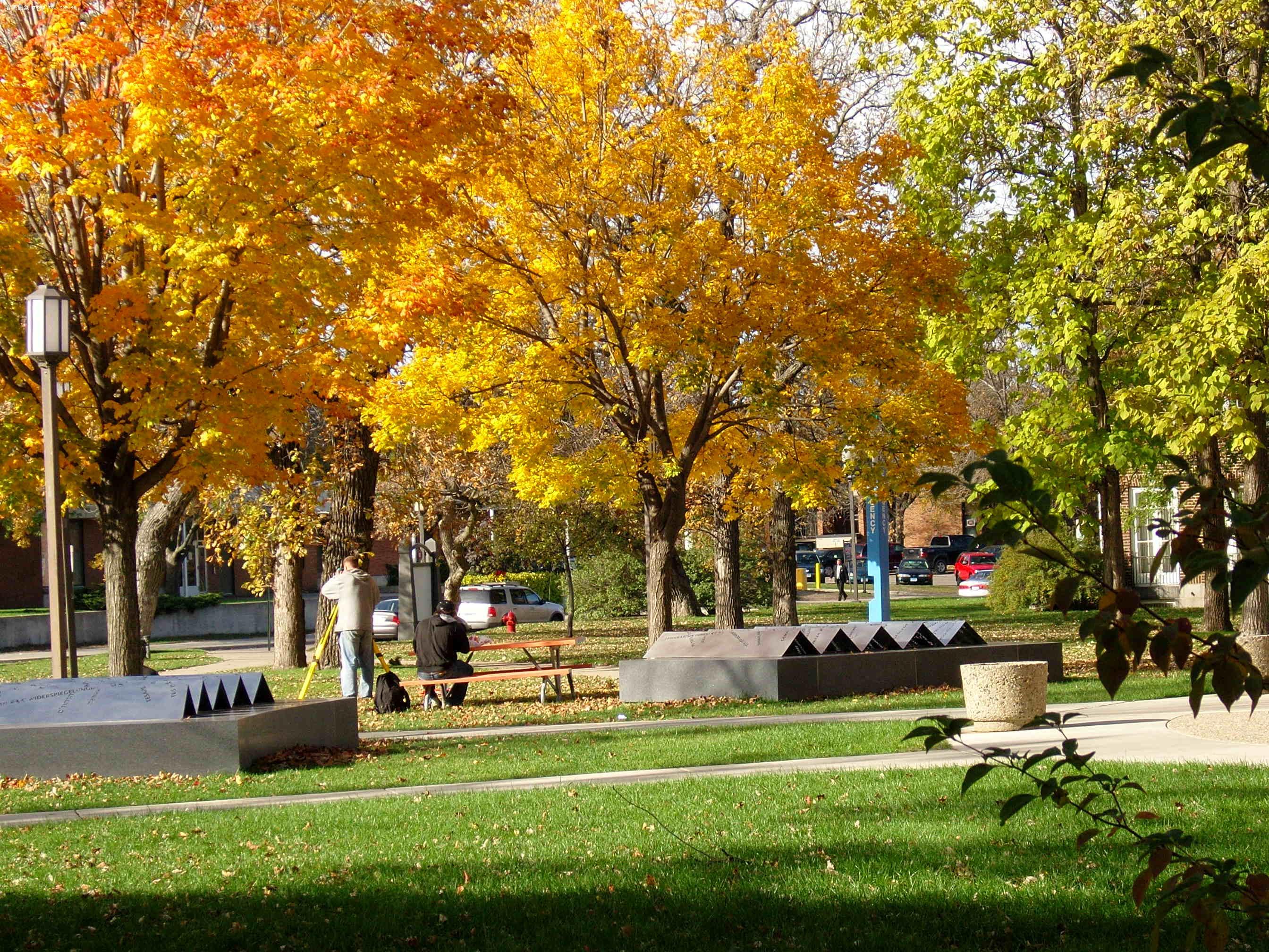 秋天的风景图片图片; 大明宣德炉真品全图;