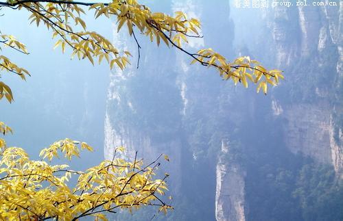 湖南张家界风景