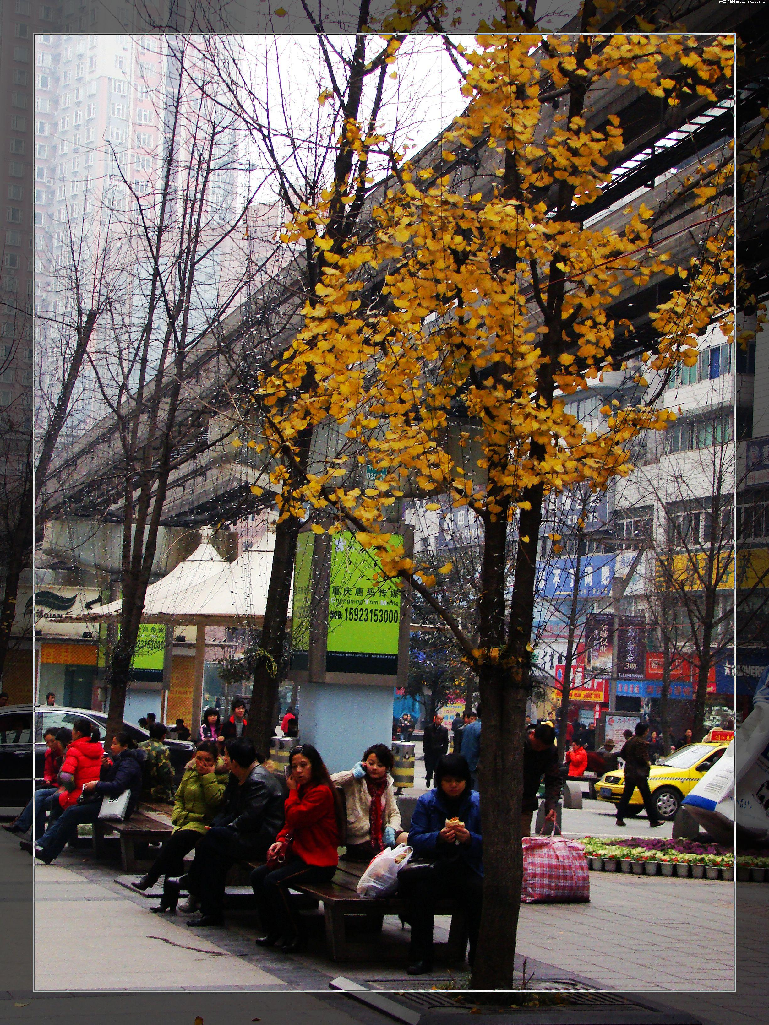 【重庆杨家坪街头随拍~】-论坛-zol中关村在线