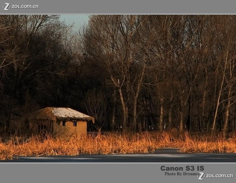 冬天树林中的小房子