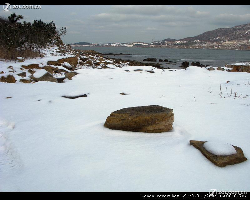 海边雪景!-中关村在线摄影论坛