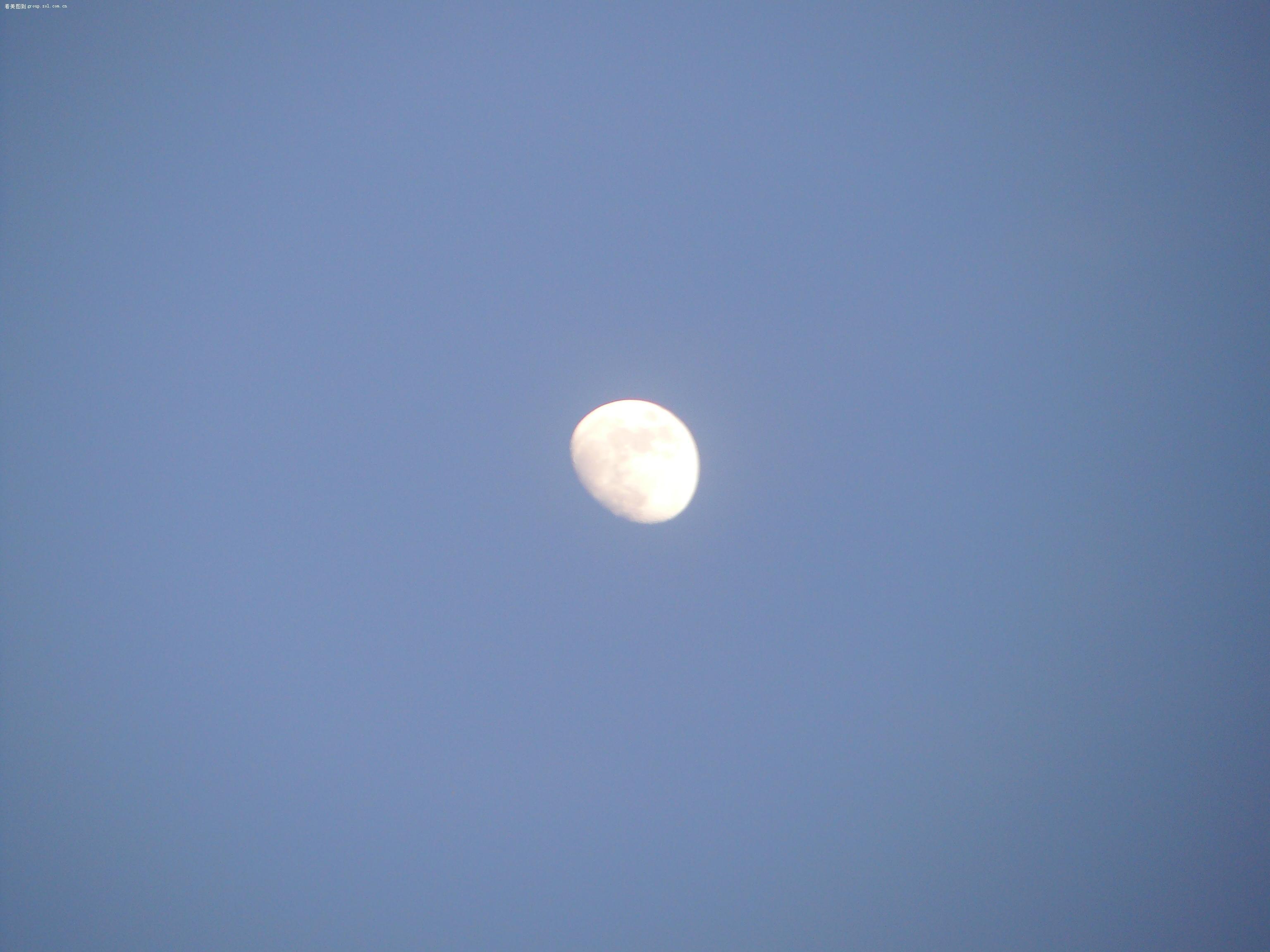 傍晚月亮高清壁纸