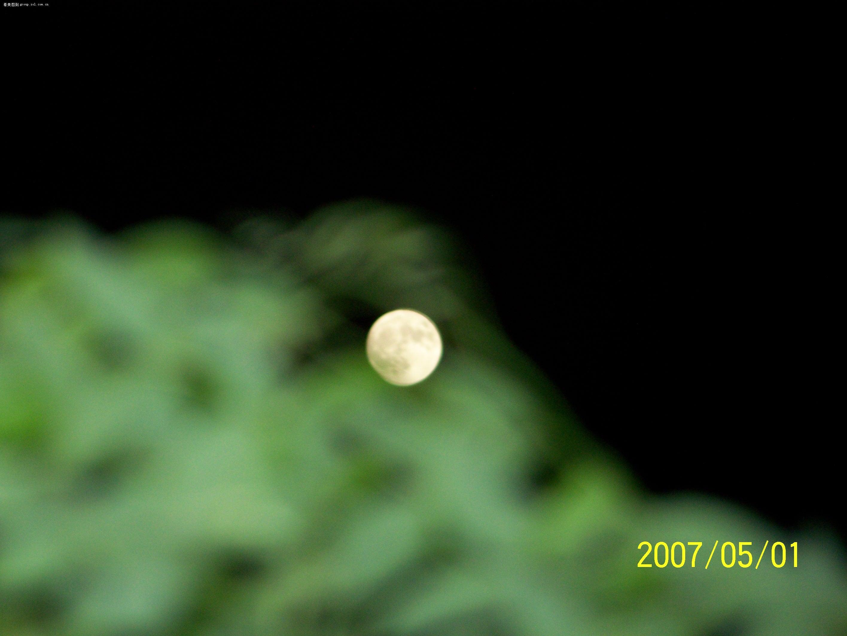 【十五的月亮】- 论坛-zol中关村在线