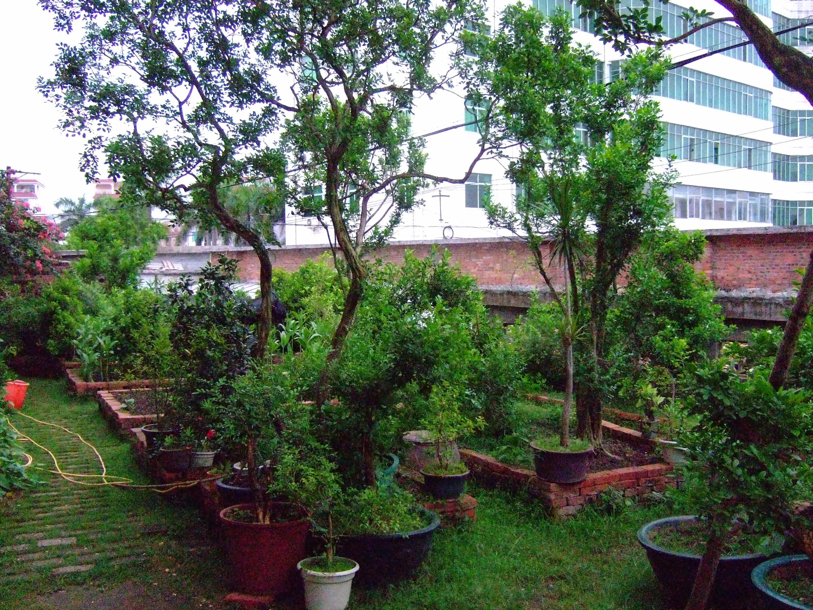 富士f31fd论坛 私家花园!